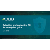 Detecting and Protecting PII: An Enterprise Guide
